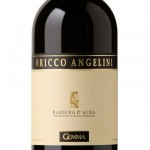 Barbera Bricco Angelini doc 2008